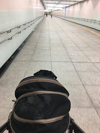 電車でGO