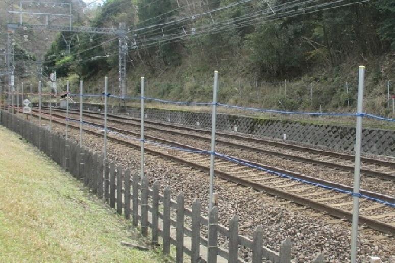 奈良の鹿1鹿踏切用防止ネット
