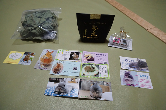 ぴょん子170605_00