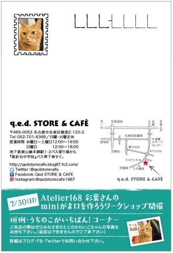 ねこねこ展6アテナ
