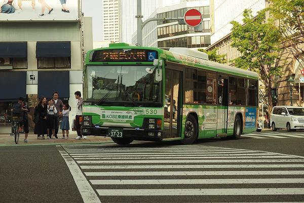 E4300453.jpg