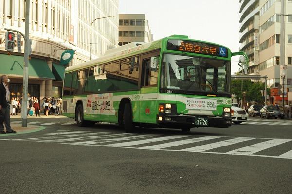 E4300476.jpg