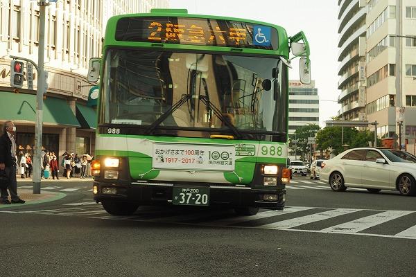 E4300484.jpg
