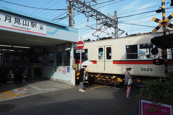 E7010113.jpg