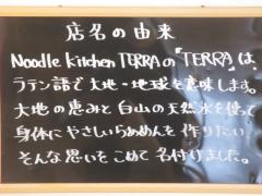 Noodle kitchen TERRA-10