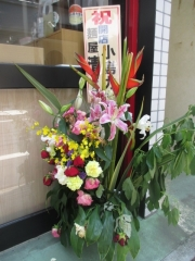 【新店】麺屋 清-10