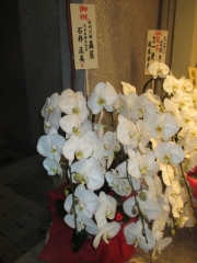 【新店】松戸中華そば 富田食堂-8