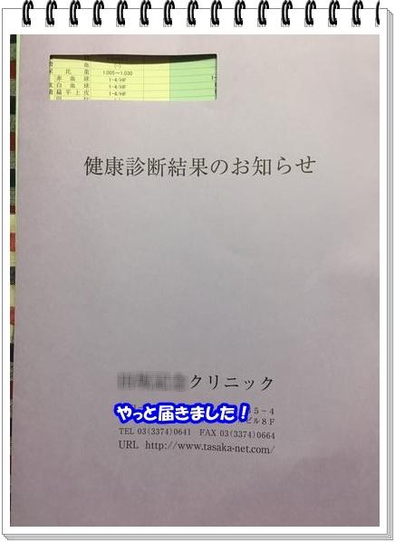 IMG_7433.jpg