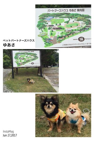 fc2blog_20170627182357eb6.jpg