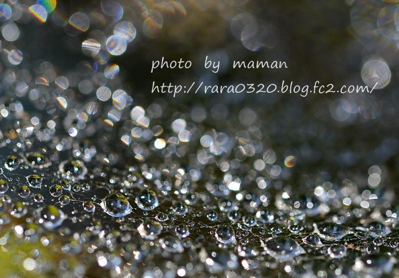 M17_8533 bbbbb