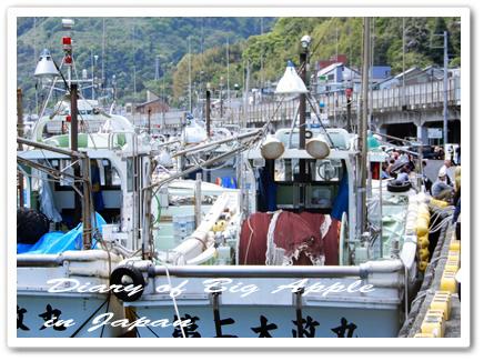 桜エビ漁港