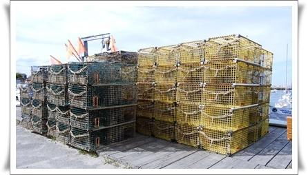 ロブスターを獲る籠