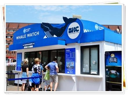 クジラを観るボート
