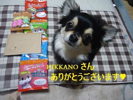 HIKKANO さんありがとうございます♥