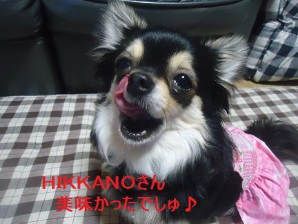 HIKKANOさん