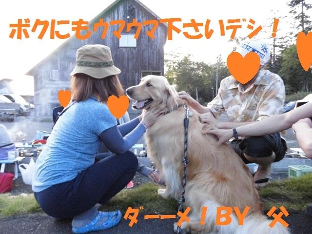 CIMG1479_P.jpg