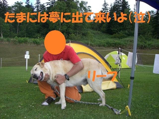 CIMG5796_P.jpg