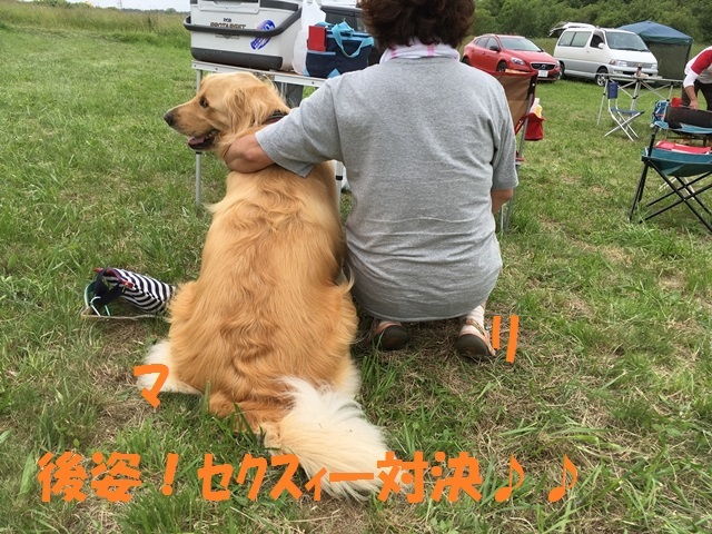 IMG_4322_P.jpg