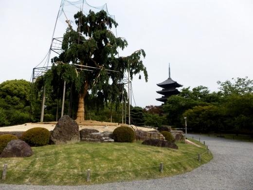 東寺 (10)