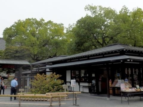 東寺 (15)
