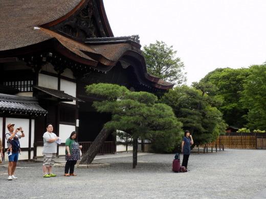 西本願寺 (21)