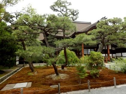 西本願寺 (9)