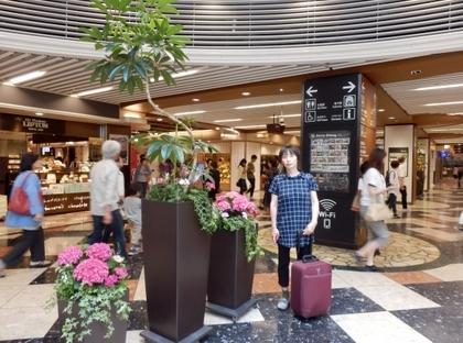 京都駅 (5)