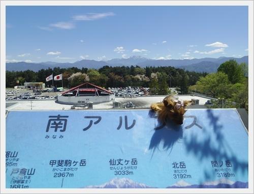 八ヶ岳IMGP6293-20170505