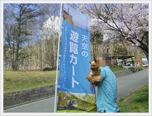 八ヶ岳IMGP6336-20170505