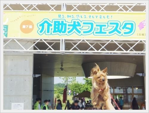 愛・地球博公園iIMGP6405-20170520