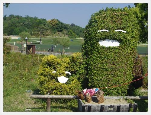 愛・地球博公園iIMGP6411-20170520