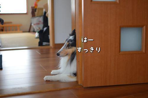 IMG_5416.jpg