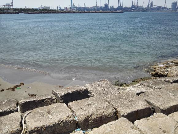 鹿島港 キス釣り 投げ釣り キス メゴチ 2017年 5月