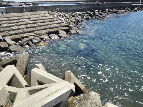 那珂湊 漁港 港 魚市場 釣り キス メバル