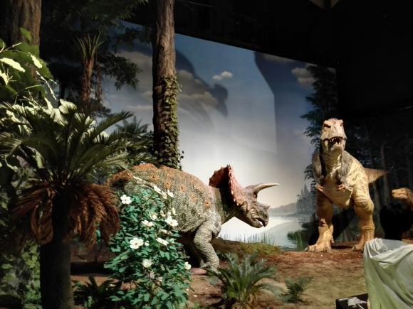 ミュージアムパーク 茨城県自然博物館 自然 博物館 恐竜 子連れ 遊び 公園