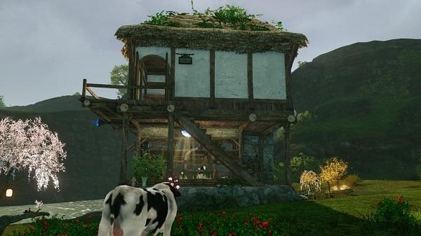 5月5日酪農草屋根