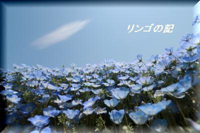 青い世界②