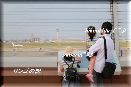 国際ターミナル②