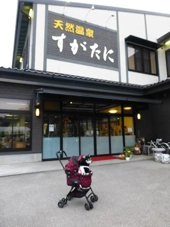 須賀谷温泉1