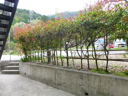 須賀谷温泉10