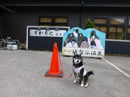 須賀谷温泉朝のお散歩1