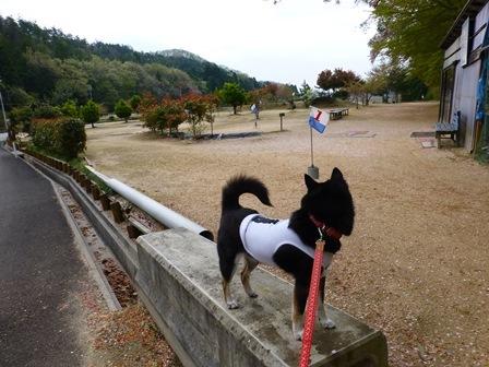 須賀谷温泉朝のお散歩13