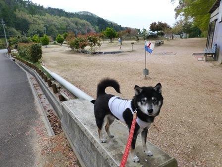 須賀谷温泉朝のお散歩14