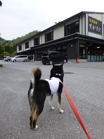 須賀谷温泉朝のお散歩28