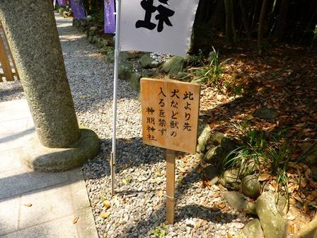 神明神社7