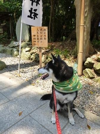 神明神社8