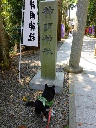神明神社11
