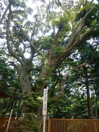 神明神社43