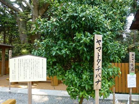 神明神社44
