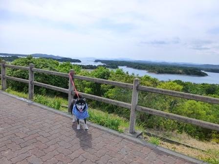 ともやま公園展望台6